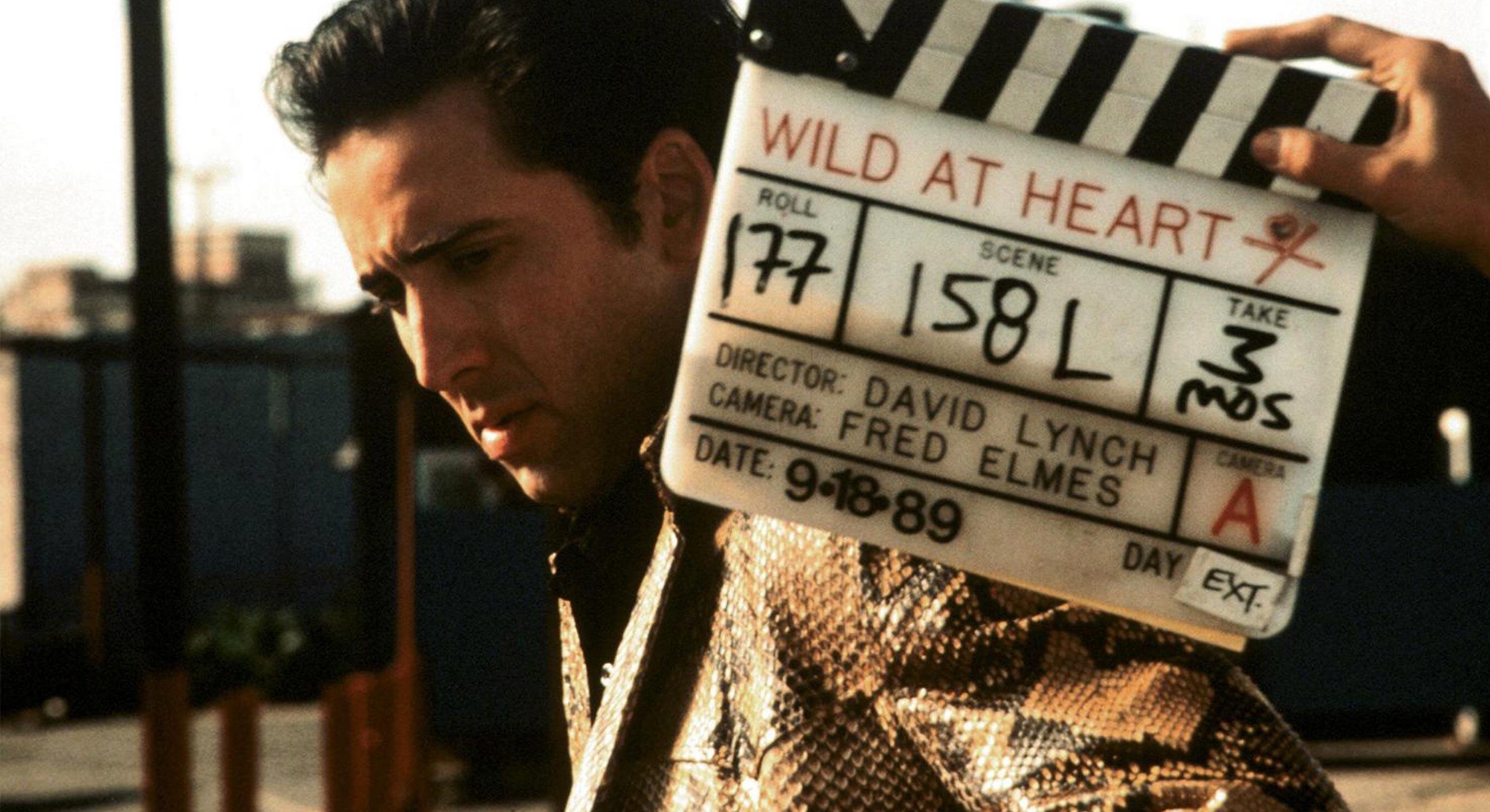 David Lynch TV still image from Wild at Heart