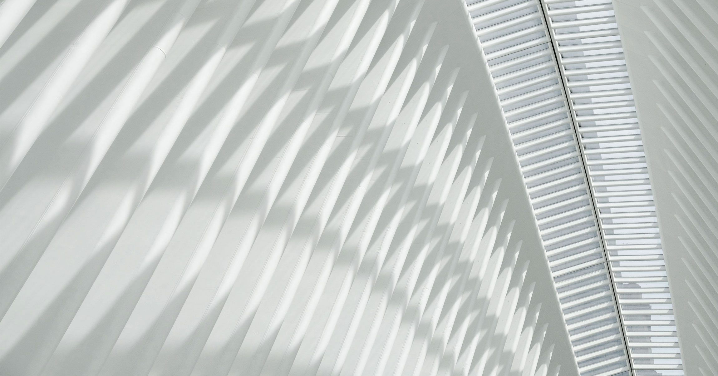 The Oculus ceiling at Westfield World Trade Center