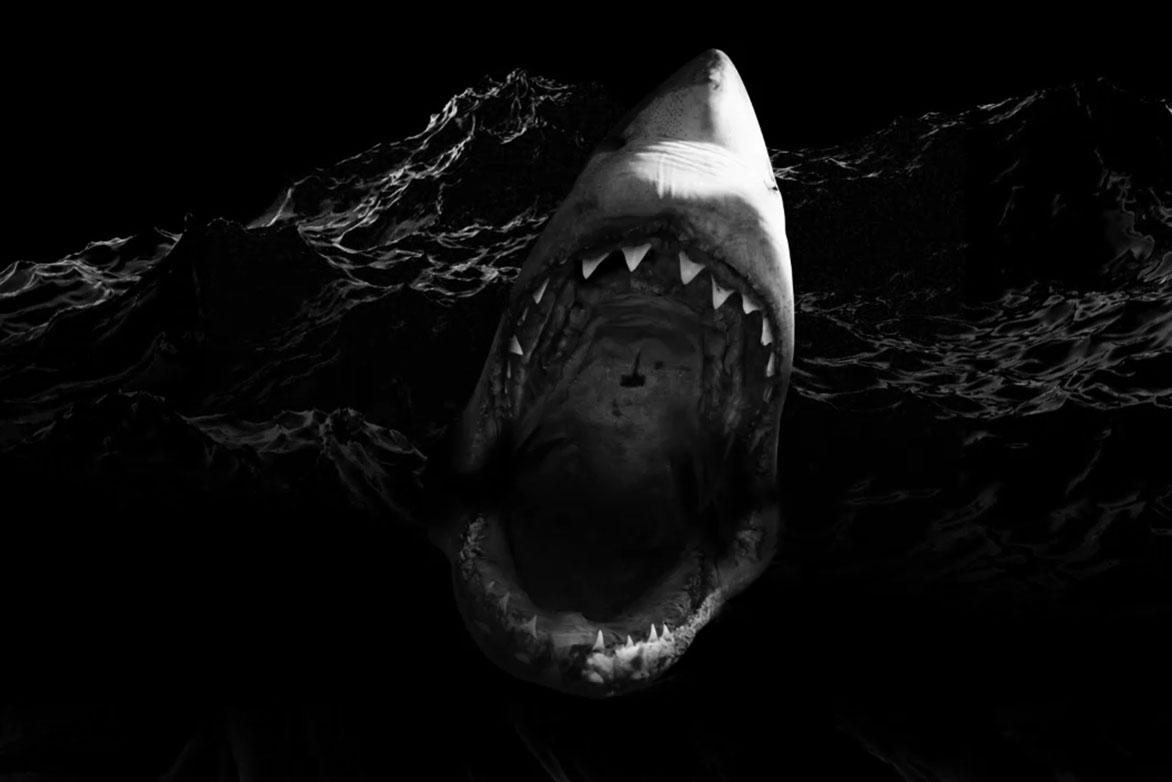 Shark video for 512w22 by Vornado