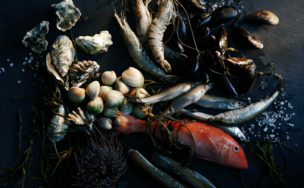 Art Direction of Seafood Still Life for Westfield World Trade Center by Joseph De Leo